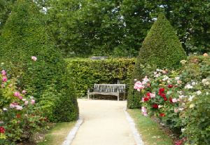 Bench at end of path with flowers